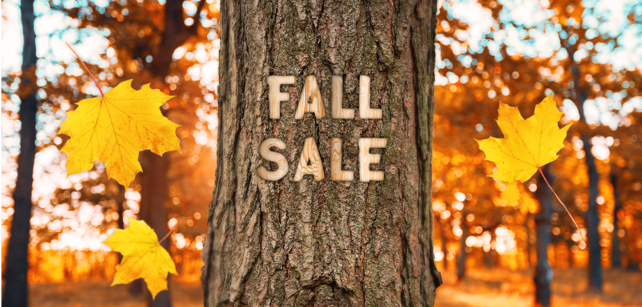 DTG Fall Sale